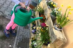 Pečujeme o květiny