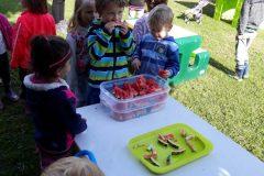 Ten meloun jsme si vypěstovali - o to více chutná