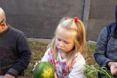 Není ten meloun nějaký malý?
